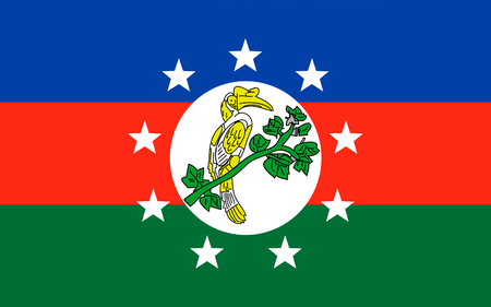 chin: Flag of Chin State is a state in western Myanmar.
