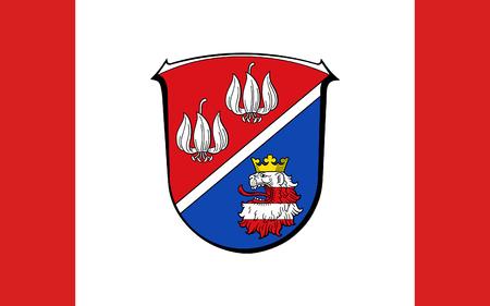 frankfurt germany: Flag of Vogelsbergkreis is a district in the middle of Hesse, Germany. 3d illustration