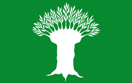 north rhine westphalia: Flag of Wesel is a district in the northwestern part of North Rhine-Westphalia, Germany. 3d illustration