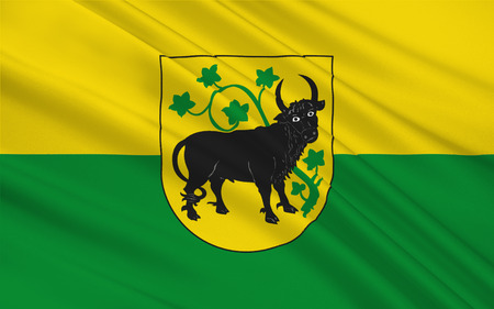 western town: Flag of Gustrow is a town in Mecklenburg-Western Pomerania, Germany. 3d illustration