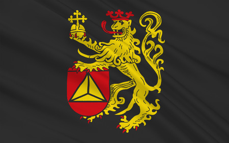Flag of Frankenthal is a town in southwestern Germany, in the state of Rhineland-Palatinate.