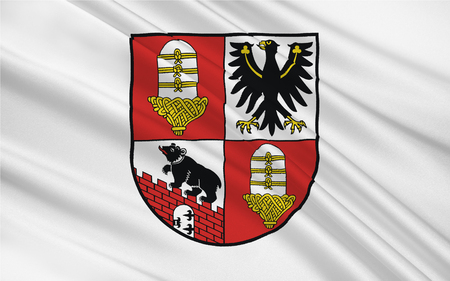 Flag of Salzland is a district in the middle of Saxony-Anhalt, Germany. 3d illustration