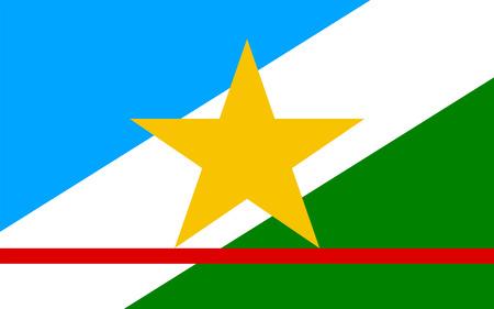 vista: Flag of Roraima is the state of Brazil. 3d illustration