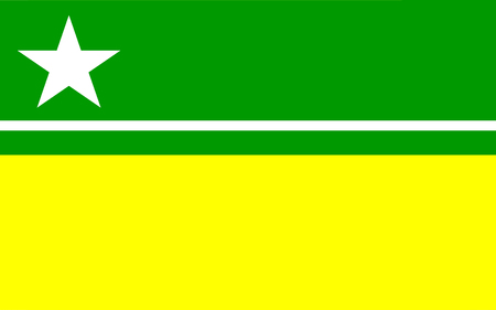 boa: Flag of Boa Vista is the capital of the Brazilian state of Roraima. 3d illustration