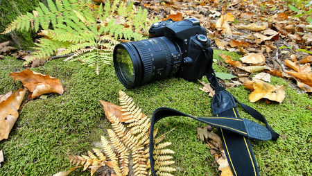 The camera lying on the fallen leaves background