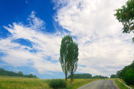 The road, landscape and the blue cloudy sky