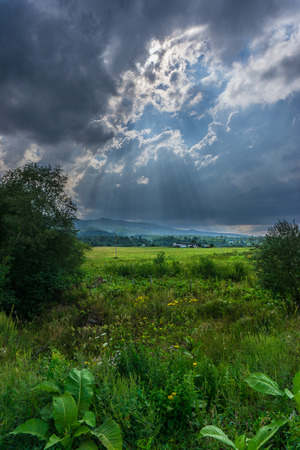 Sun rays over green meadow and mountains
