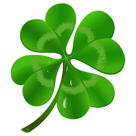 Four leaf clover - St. Patricks day symbol. Vector illustration