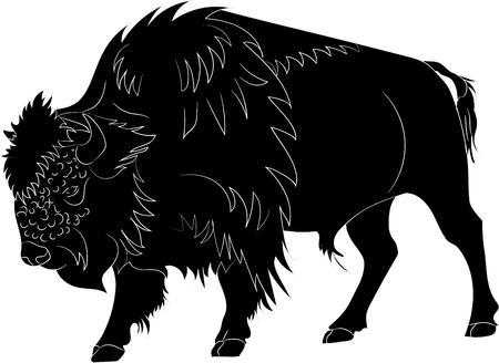 American buffalo or bull on white background. Vector illustration Vettoriali