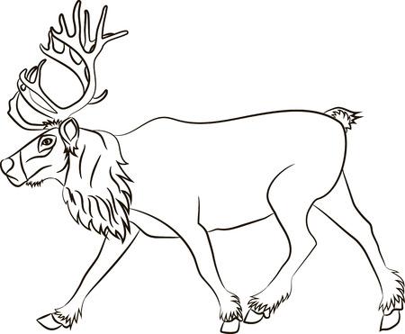 Reindeer running on white background. Vector illustration
