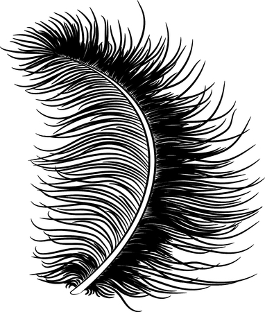 Feather down fluffy. Vector illustration