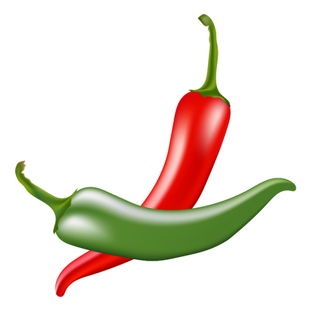 Red and green hot chili peppers on white background. Vector illustration