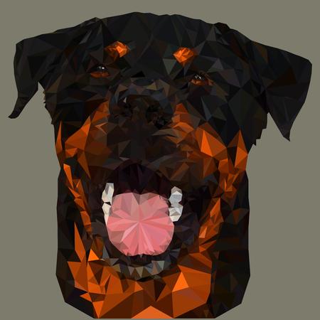 Triangular of the Rottweiler Dog Face. Vector triangulated illustration Ilustração