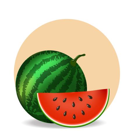 Watermelon and slice on white background. Vector illustration Ilustração