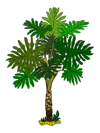 Palm trees isolated on white background. Vector illustration
