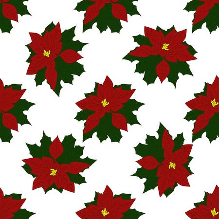 Seamless pattern of Christmas Poinsettia. Vector illustration Ilustração