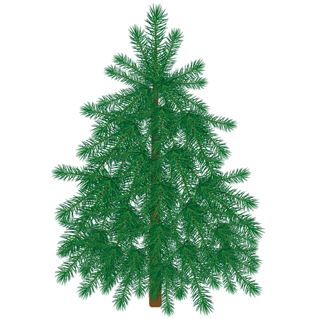 Green fir tree for Christmas and happy New Year cards. Vector illustration Banco de Imagens - 126932781