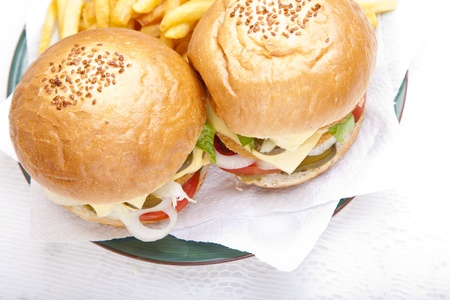 Horizontal close-up from top on juicy huge chicken scallop burger Stock Photo - 10563326