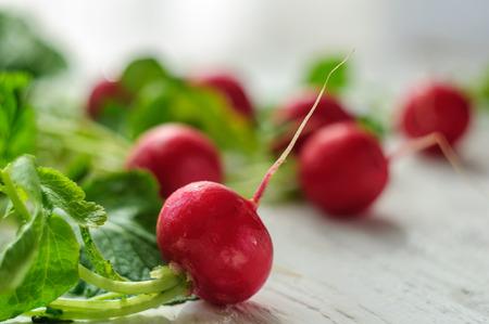 radishes: Young fresh radishes on white wooden background