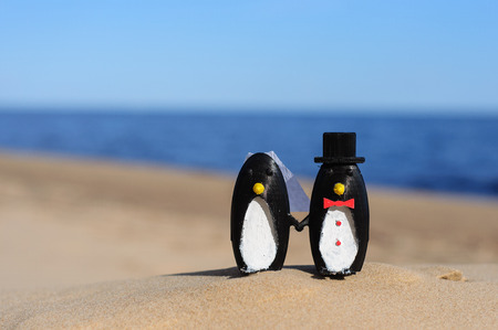 topper: Penguins cake topper on beach
