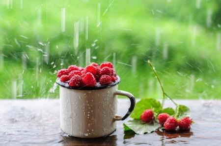 enamel: White enamel can and mug with fresh raspberry on rain