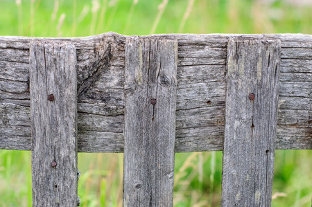 grey nails: Part of old wooden fence on green background