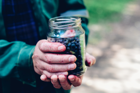 dirty man: Dirty man hands holding jar of forest blueberry