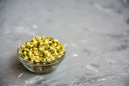 Bowl with mung bean with sprouts.Close up on grey concrete background