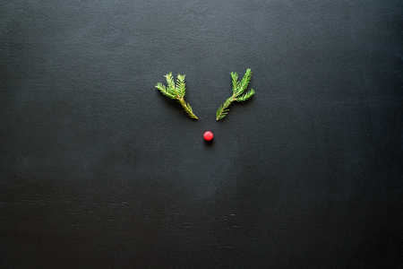 Christmas deer from tree branches and berry on blackboard