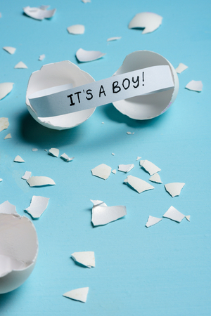Baby shower concept. Boy, blue. Cracked egg with a message ITS A BOY. Like fortune cookies
