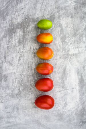 Green, yellow and red plum tomatoes in line on grey background. Different colors, gradient