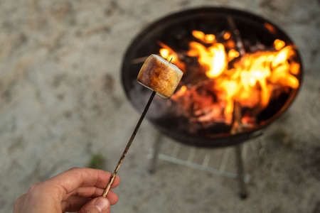 Roasted marshmallow on wooden stick near camp fire.