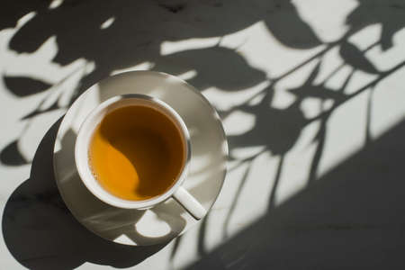 Cup of herbal or green tea at marble table with hard sun lught and plant shadows Standard-Bild
