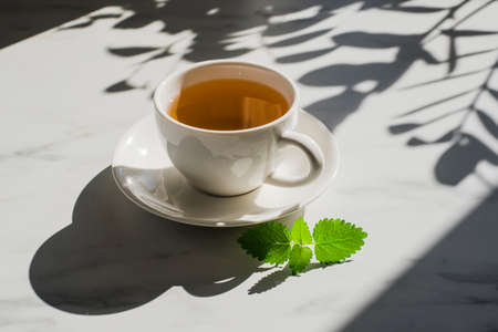 Cup of herbal mint tea at marble table with hard sun lught and plant shadows