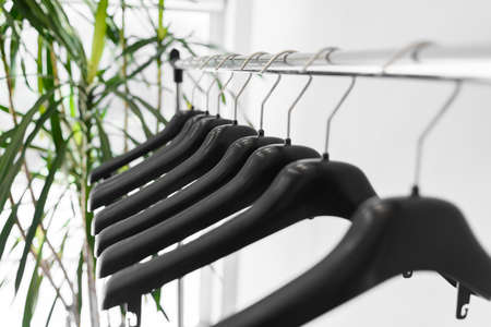 Plastic empty clothes hangers on metallic rail with home palm tree on back Stock Photo