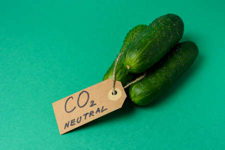 Cucumber with carbon emission label made from recycled paper on green