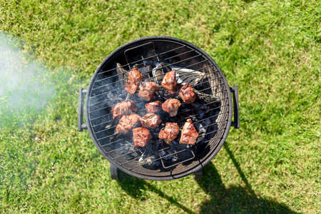 Pieces of roasted meat on grill rack at home backyard on sunny summer day