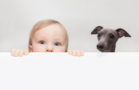 little boy and dog peeping out from hiding Stock Photo