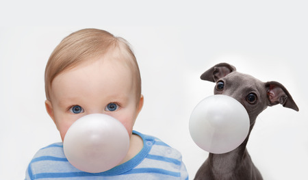 little boy and dog makes a bubble from chewing gum