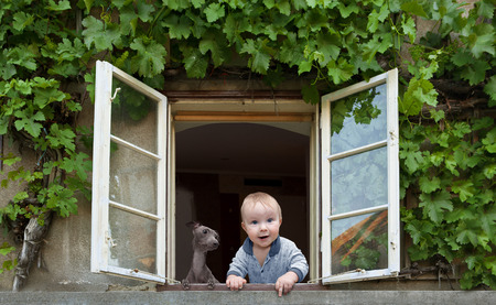 baby and dog looking out the window