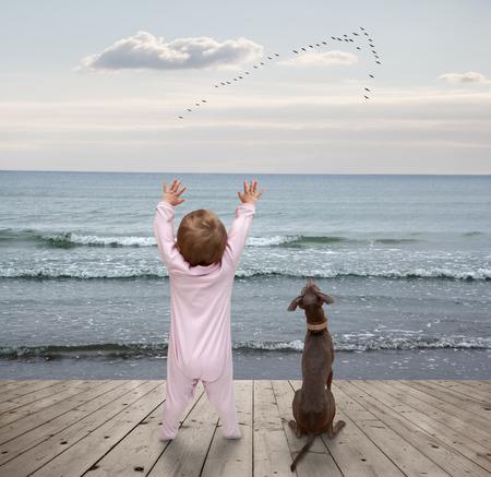 bandada pajaros: pequeño niño y un perro viendo una bandada de pájaros