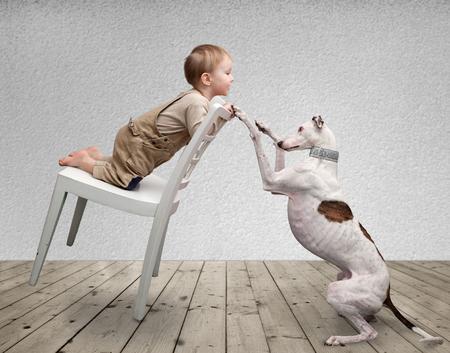 perros graciosos: niño y un perro jugando en la sala de Foto de archivo