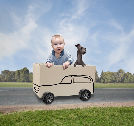Little boy with a dog playing with paper box Stock Photo