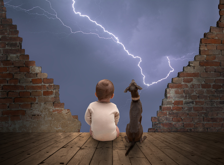 赤ちゃんと犬の雷雨を見て