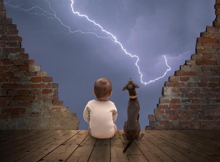 tormenta: bebé y viendo perro tormenta Foto de archivo