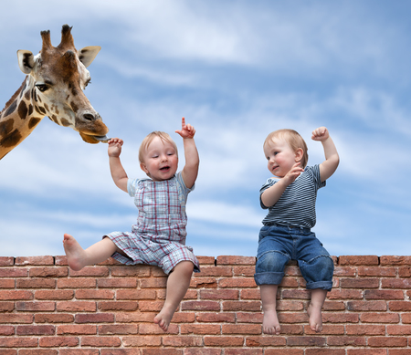Two boys playing with a giraffe