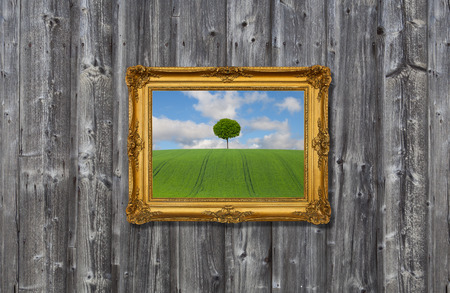 landscape in a gold frame Stock Photo