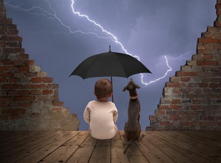 아기와 강아지보고 뇌우 스톡 콘텐츠