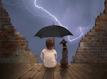 baby and dog watching thunderstorm
