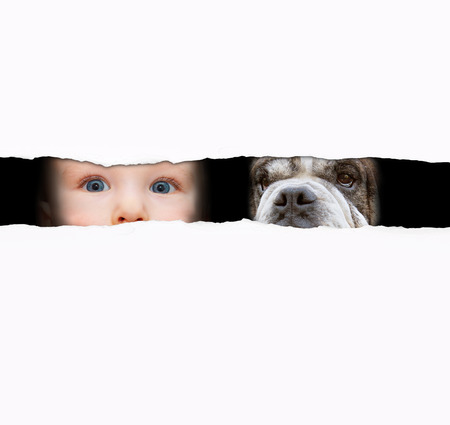 little boy and the dog  looking between the gap